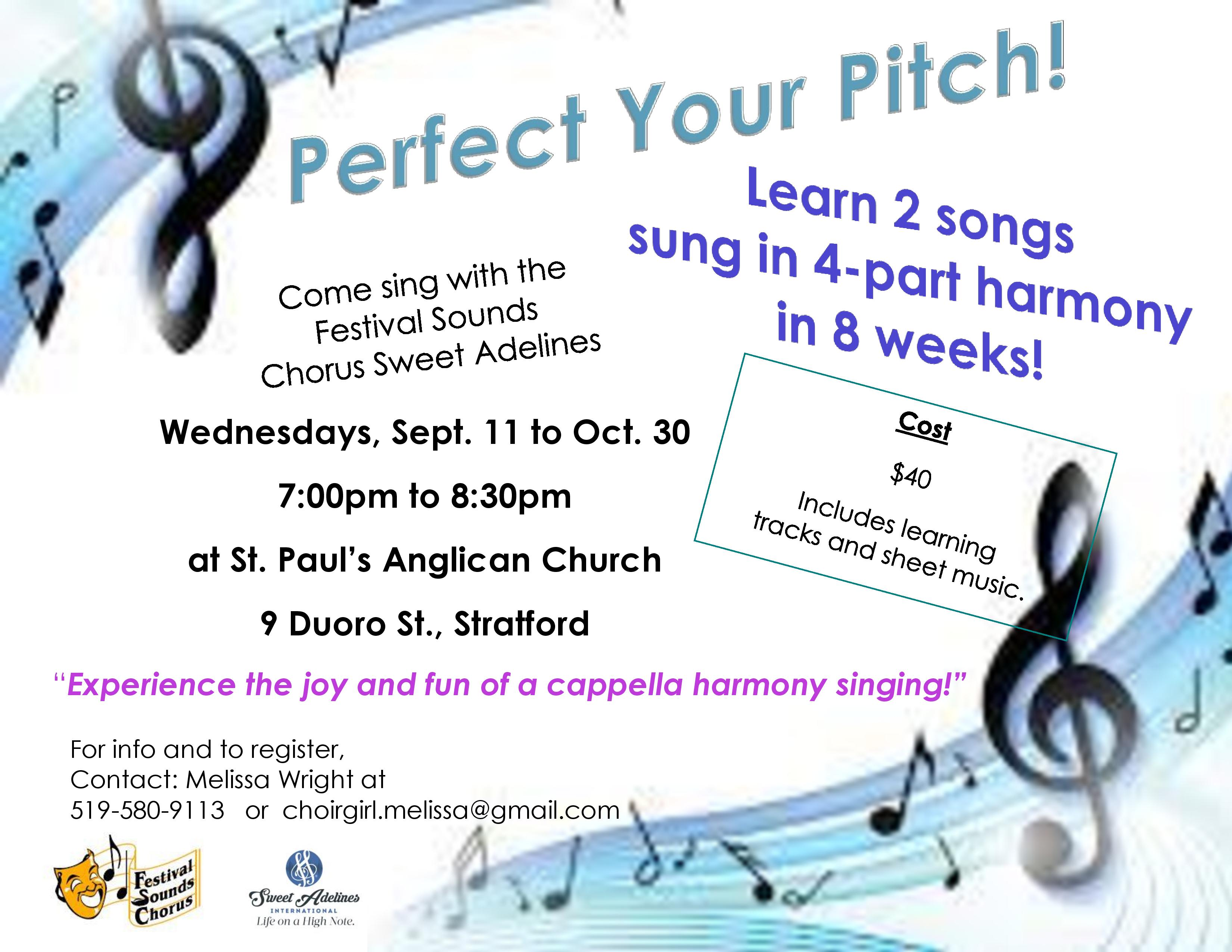 Perfect Your Pitch poster